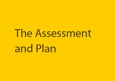 The Assessment and Plan